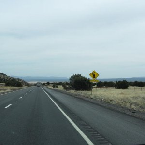 on the road to Grand Canyon