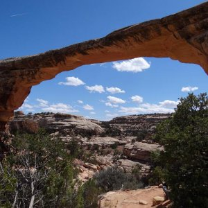 Natural Bridges SP
