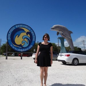 Dolphin Research Center, Grassy Key